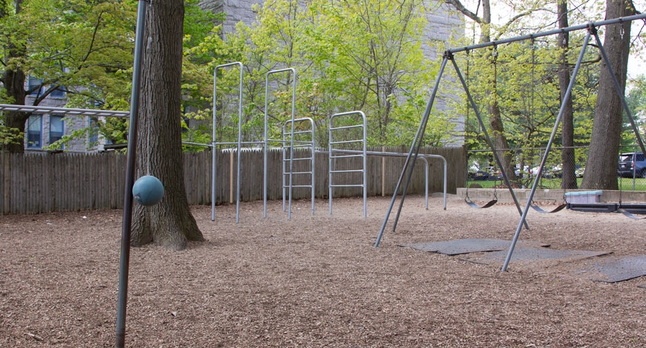 Swingset and jungle gym